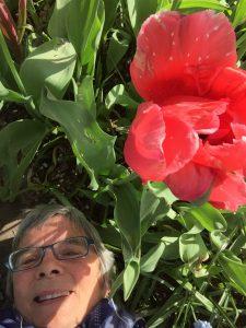 Listening in the garden