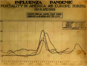 Influenza Pandemic Mortality in 1918 1919