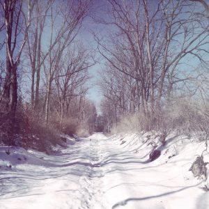 Escape to Warmer Climes