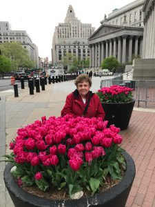 Spring in NYC with EQ