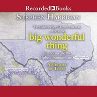 BIG WONDERFUL THING