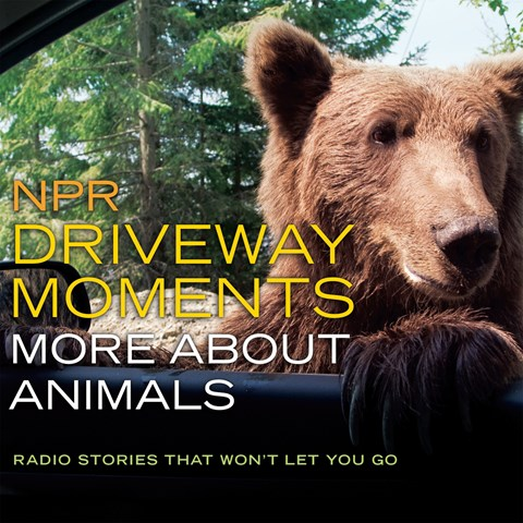 NPR DRIVEWAY MOMENTS: MORE ABOUT ANIMALS