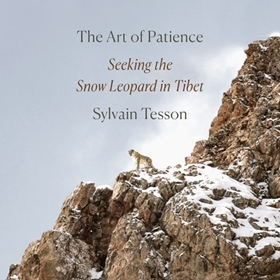 THE ART OF PATIENCE by Sylvain Tesson, Frank Wynne [Trans.], read by David Pittu