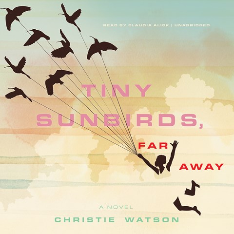 TINY SUNBIRDS, FAR AWAY